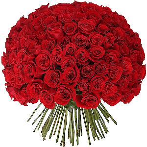 Букет из 101 красной розы с доставкой в Волжском